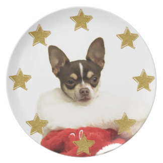Christmas Chihuahua dog decorative plate
