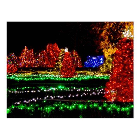 Christmas Classic - Shore Acres State Park Oregon Postcard