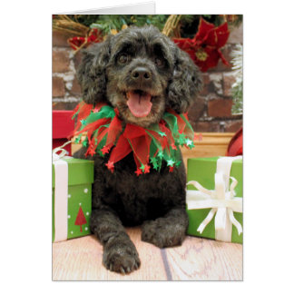 Christmas - Cockapoo - Rocky Card