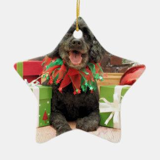 Christmas - Cockapoo - Trumbo Ceramic Star Decoration