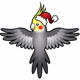 Christmas Cockatiel Photo Cut Outs
