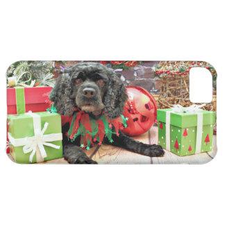 Christmas - Cocker Spaniel - Suzie iPhone 5C Cases