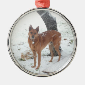 Christmas Collection Add Pet or Family Photo Silver-Colored Round Decoration