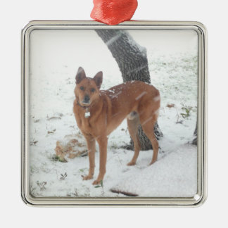 Christmas Collection Pet or Family Photo Christmas Ornament