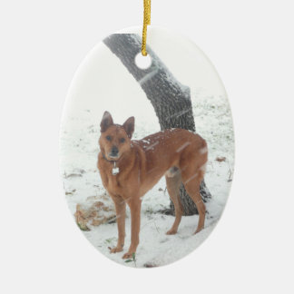 Christmas Collection Pet or Family Photo Ceramic Oval Decoration