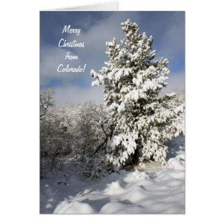 Christmas Colorado Card