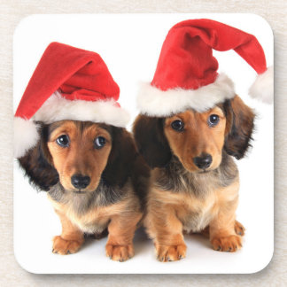 Christmas Dachshund Puppies Wearing Santa Hats Coaster