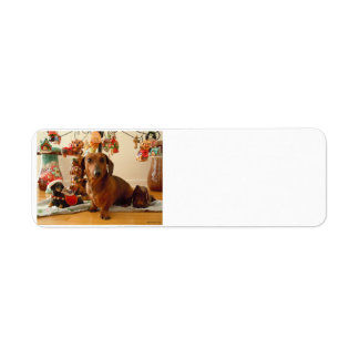 Christmas Dachshund (Version 1) Return Address Label