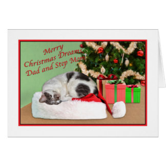 Christmas, Dad and Step Mom, Sleeping Cat Greeting Card