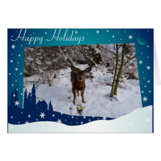 Christmas Deer Note Card