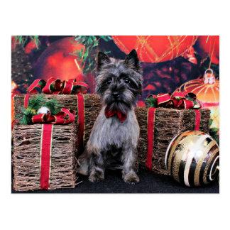 Christmas - Dexter - Cairn Postcard