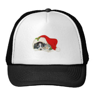 Christmas Dog and Cat Trucker Hats