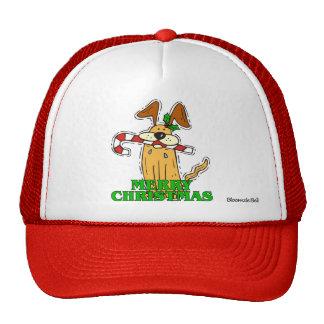 Christmas: Dog & Candy Cane Hats