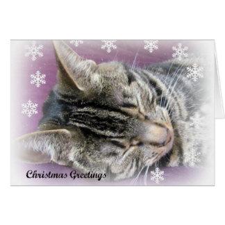 Christmas Dreaming card