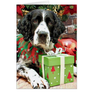 Christmas - English Springer Spaniel - Barney Greeting Card