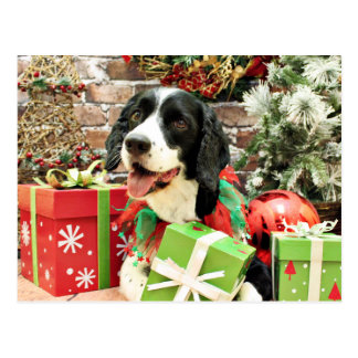 Christmas - English Springer Spaniel - Betsy Postcard