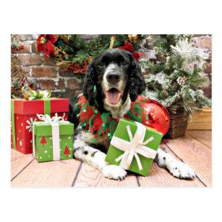 Christmas - English Springer Spaniel - Bosley Post Cards