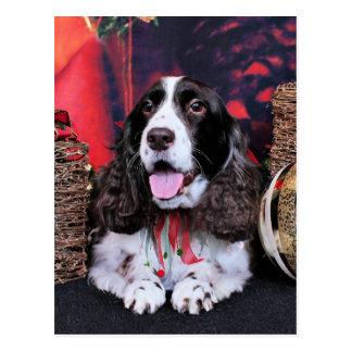 Christmas - English Springer Spaniel - Chloe Postcard
