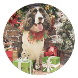 Christmas - English Springer Spaniel - Cloe Dinner Plates
