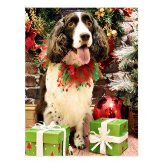 Christmas - English Springer Spaniel - Cloe Post Card
