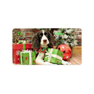 Christmas - English Springer Spaniel - Kinzie Address Label