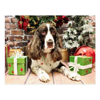 Christmas - English Springer Spaniel - Logan Postcard