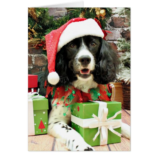 Christmas - English Springer Spaniel - Lucy Card