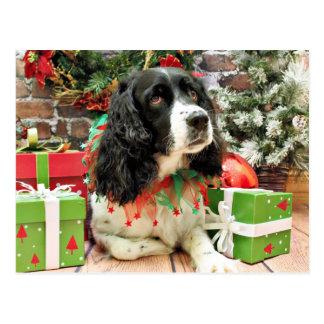 Christmas - English Springer Spaniel - Lucy Postcard