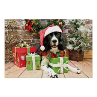 Christmas - English Springer Spaniel - Lucy Poster