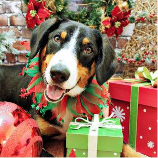 Christmas - Entlebucher Mountain Dog - Eiger Photo Sculpture