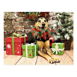 Christmas - German Shepherd X - Bailey Postcard