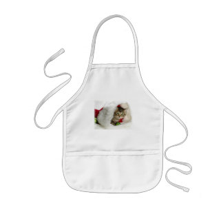 CHRISTMAS GIFT PERSONALIZE IT HOLIDAYS APRON