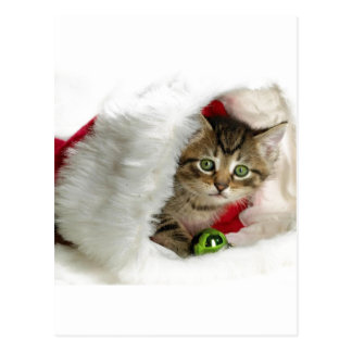 CHRISTMAS GIFT PERSONALIZE IT HOLIDAYS POST CARD