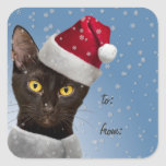 Christmas Gift Tag Stickers (Lge / Sm) Black Cat