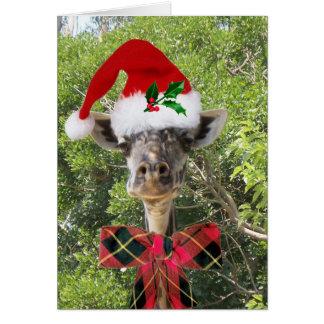 Christmas Giraffe Greeting Card