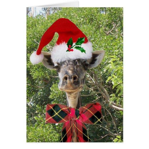 Christmas Giraffe Greeting Cards