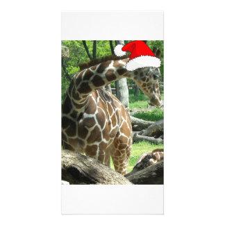 Christmas Giraffe Customized Photo Card