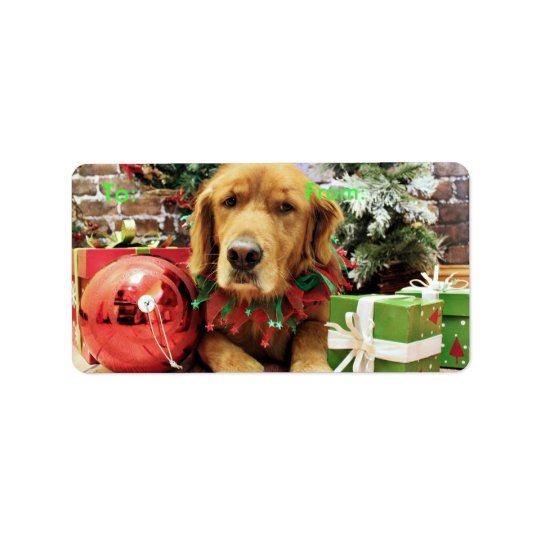 Christmas - Golden Retriever - Zoe Label