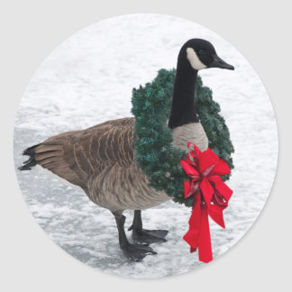 Christmas Goose stickers