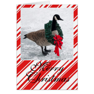 Christmas Goose with Wreath Card