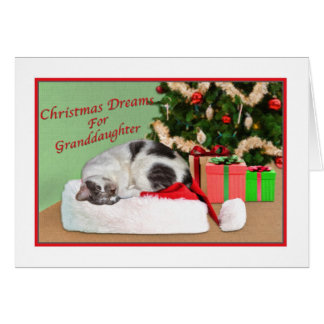 Christmas, Granddaughter, Sleeping Cat, Santa Hat Card