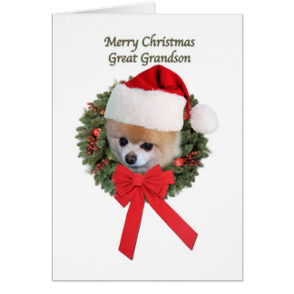 Christmas, Great Grandson, Pomeranian Dog Greeting Card