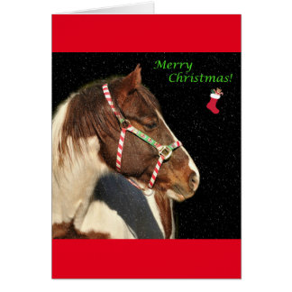 Christmas Greeting Card With Horse