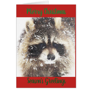 Christmas Greetings from the Wilderness Card