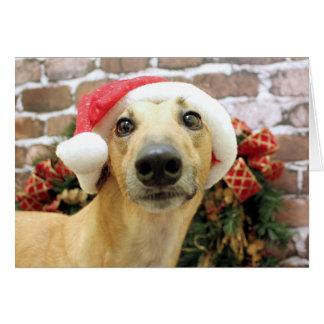 Christmas - Greyhound - Pena Greeting Card