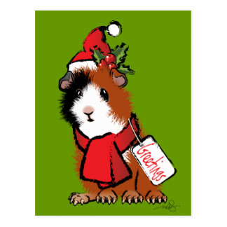 Christmas Guinea Pig Greeting Postcard