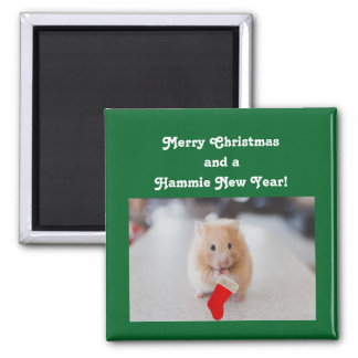 Christmas Hamster Square Magnet