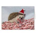 Christmas Hedgie Card