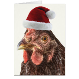 Christmas Holiday Chicken in Santa Hat Greeting Card