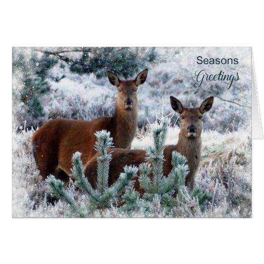 Christmas Holiday - Deer Couple Card